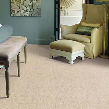 Caress Carpet by Shaw | Bowie, MD